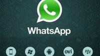 WhatsApp Messenger for Windows Free Download