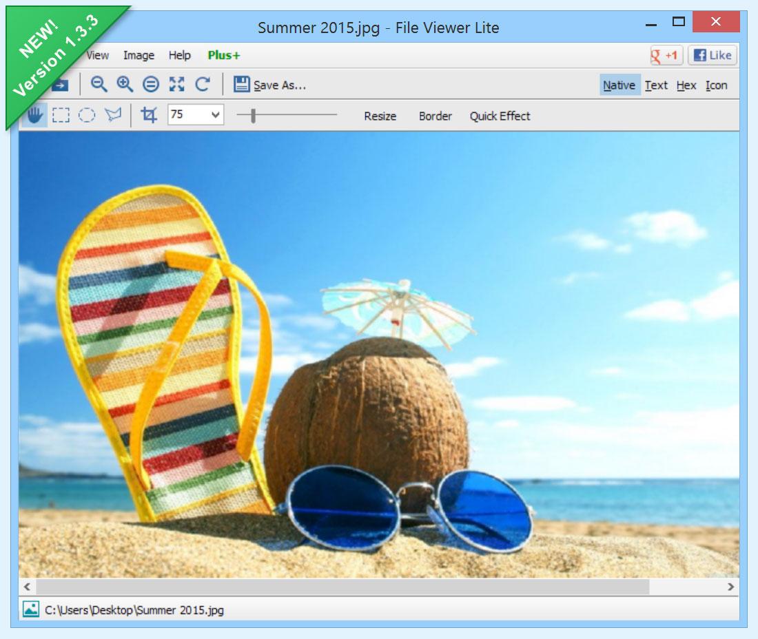 File Viewer Lite Latest Version Free Download