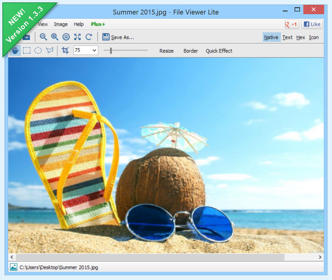 File Viewer Lite Latest Version Free Download