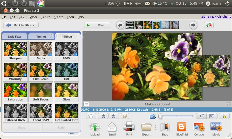 picasa photo editor free download
