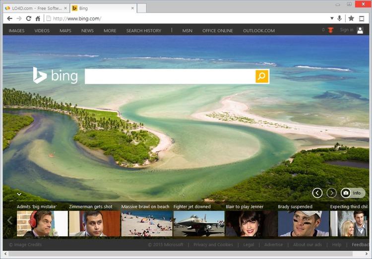 Polarity browser offline installer