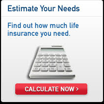 Life Insurance Calculator Free Download