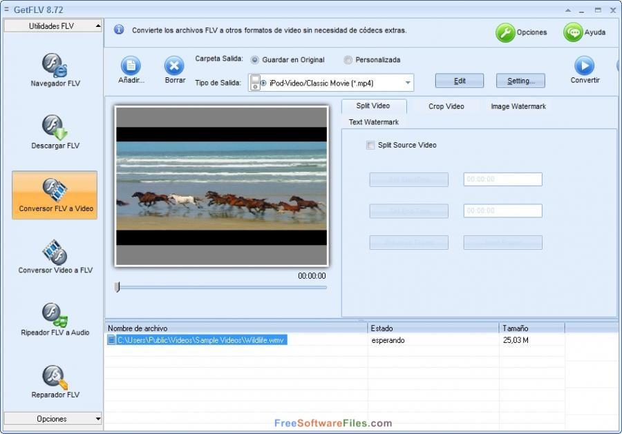 Free Download GetFLV Pro Downloader