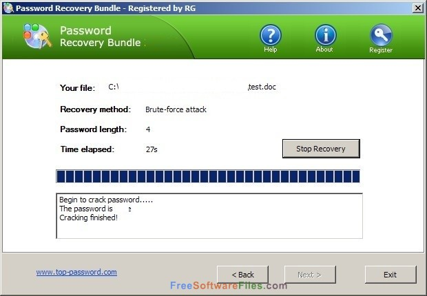 Password Recovery Bundle 4.6 free download full version
