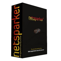 Netsparker Professional 4.8 Free Download