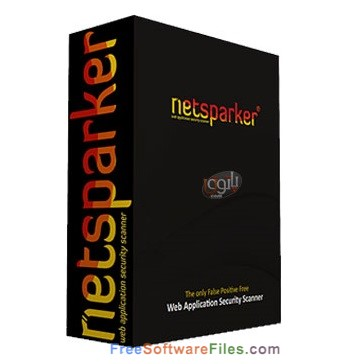 Netsparker Professional 4.8 Review