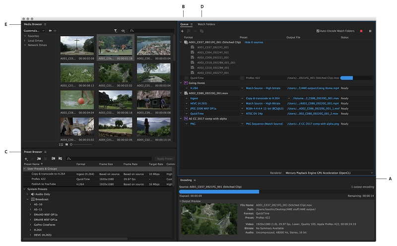 Adobe Media Encoder CC 2019 Direct Link Download