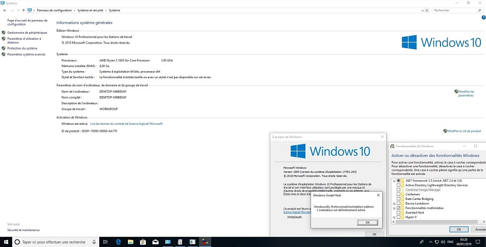 Windows 10 RS5 AIO with January 2019 free download full version