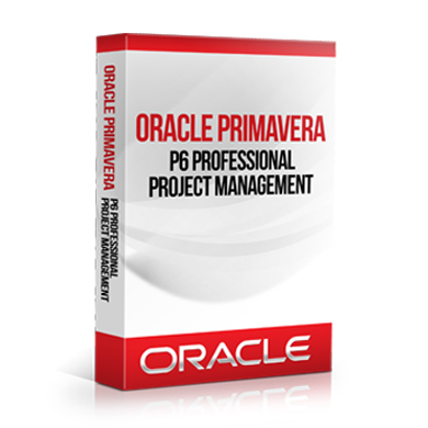 Primavera P6 Professional 17.7 Review